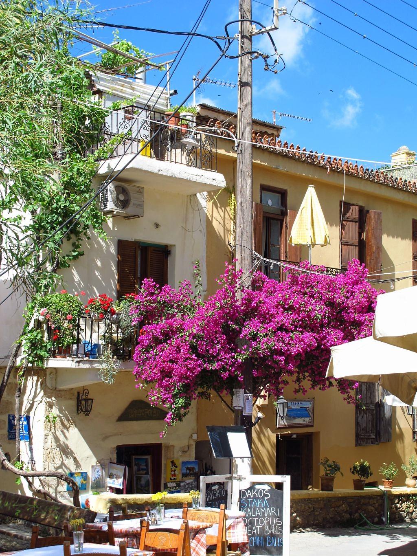 bougainvillea-on-powerpole-chania-crete-photo-by-susan-wellington