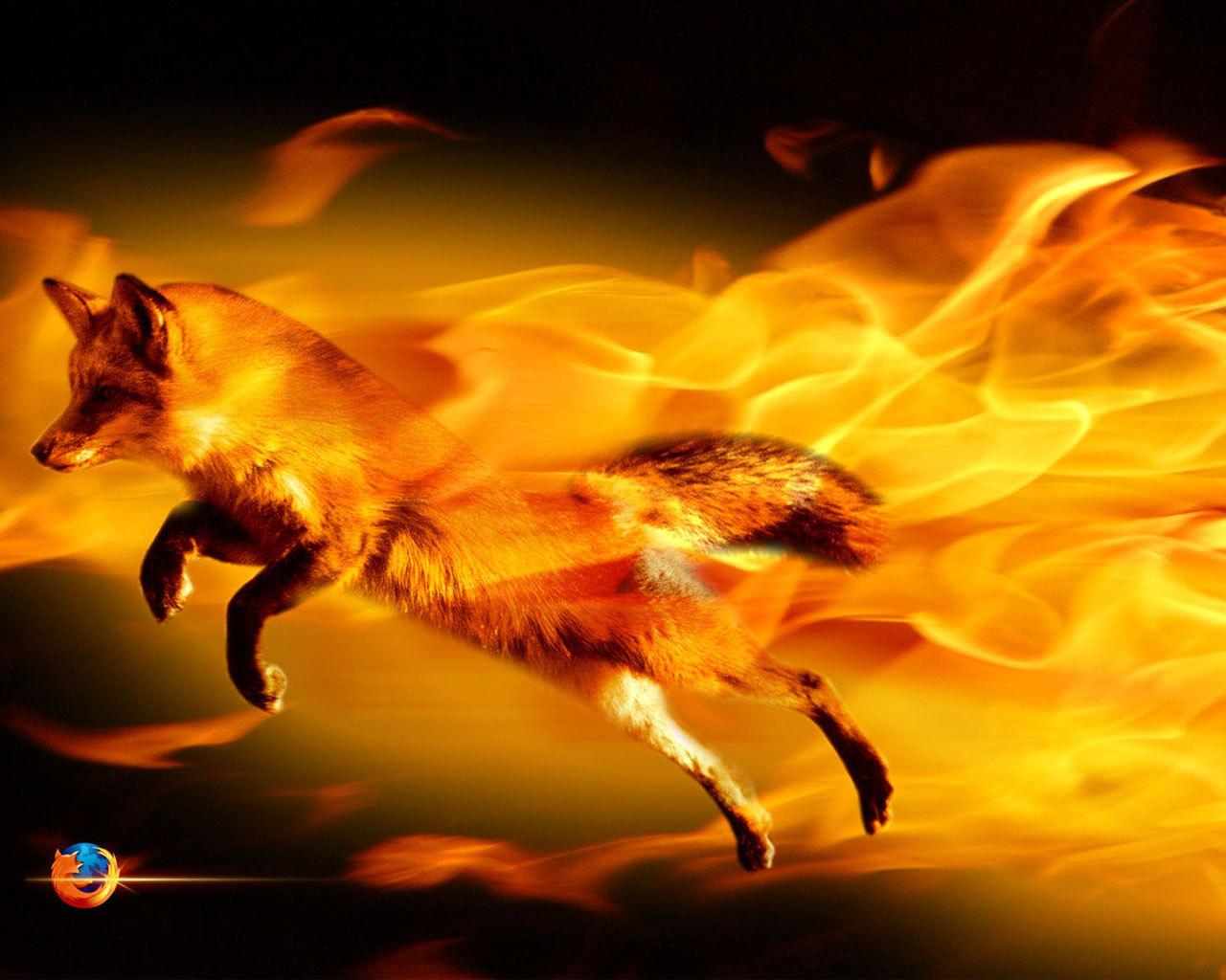 http://3.bp.blogspot.com/-TFP91Ofqe6k/TykUNgzQVoI/AAAAAAAAAHY/YOBx6czMiC4/s1600/firefox-fire.jpg