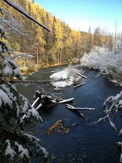 Snow, Season, Quartz, Creek
