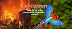 Blog Ecos Cáusticos