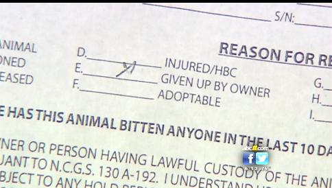 Nc Dog Bite Law Quarantine