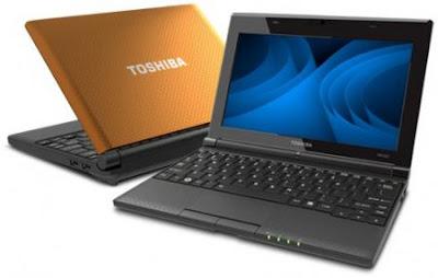 Toshiba NB550D-1003N