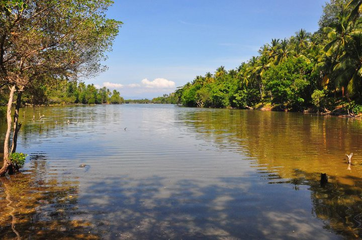 Philippine accommodation isla jardin del mar for Jardin del mar