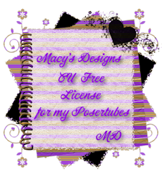 MACY'S DESIGNS PU LICENSE