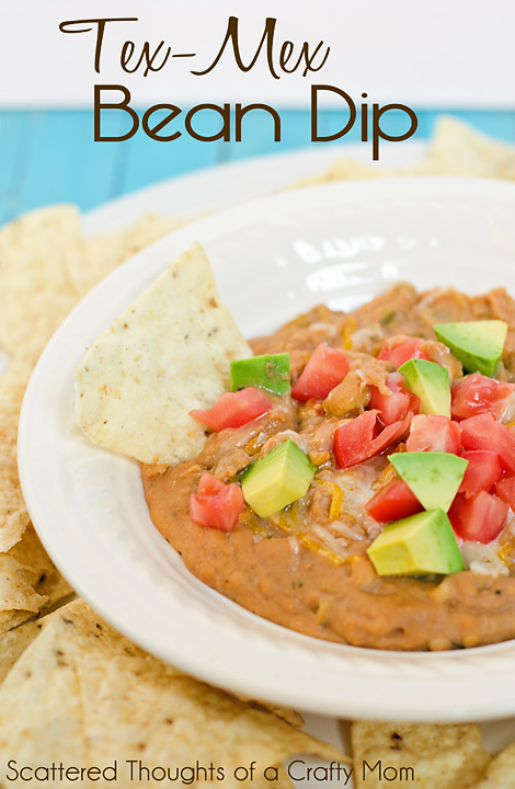 Tex-Mex Bean Dip Recipe, in the slow cooker or on the stove top.  Excellent either way!