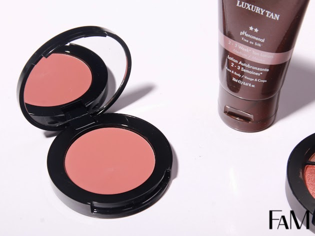 Bobbi Brown Pot Rouge Powder Pink Review, Swatches and Demo
