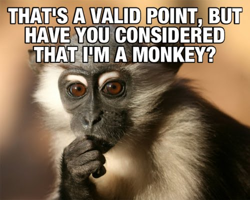 That's A Valid Point, But Have You Considered That I'm A Monkey