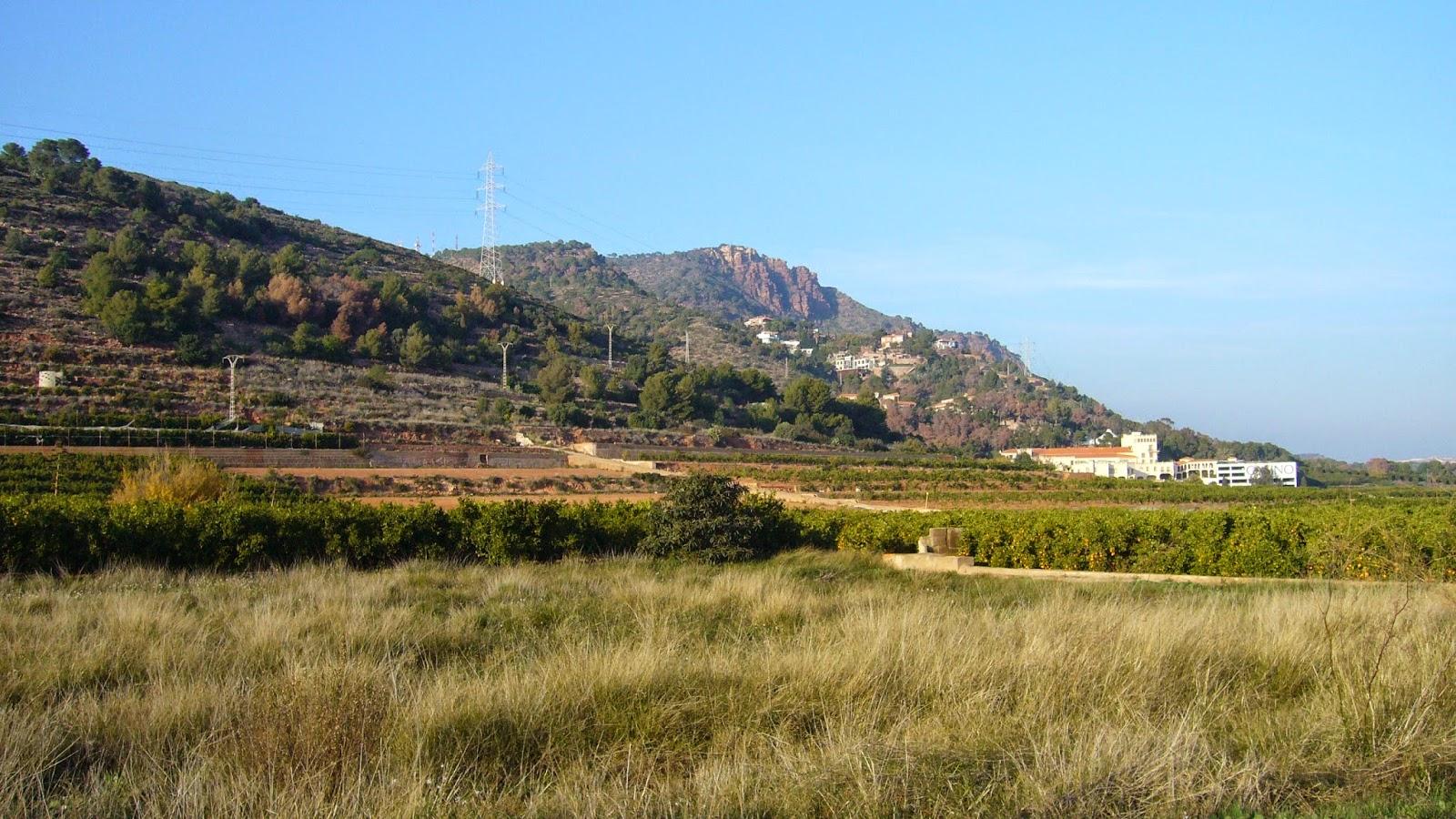 Monte Picayo Puçol