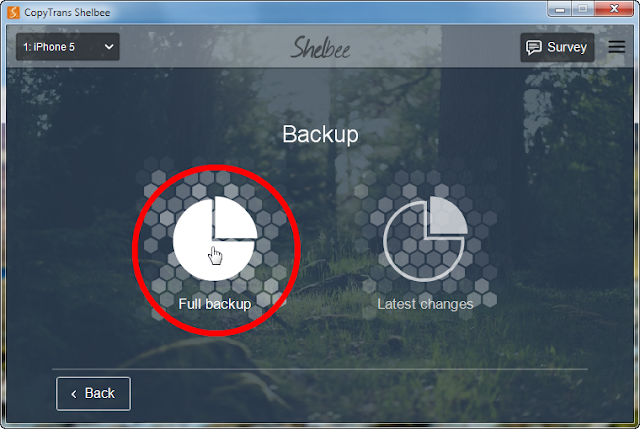 full backup button in main program window