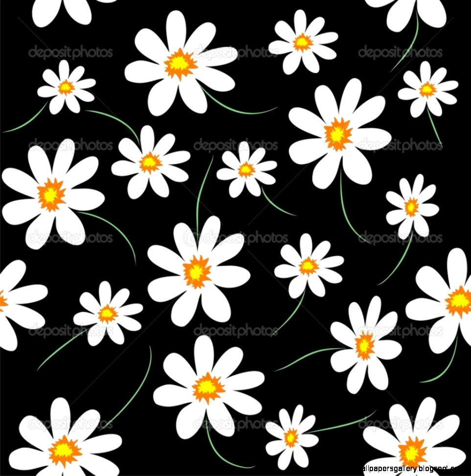 Daisy background — Stock Vector © Artulina1 6666903