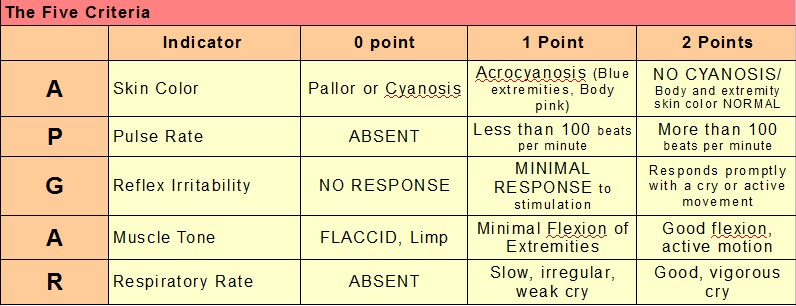 Apgar Score Table http://www.thenurseslockerroom.com/2013/02/pedia-notes-apgar-score.html
