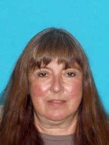 Search Continues for Dover Woman