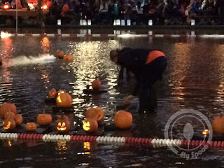 floating pumpkins on Boston Frog Pond