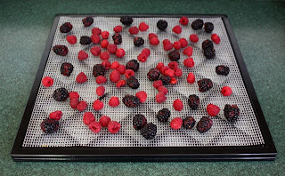How To Dehydrate Blueberries, Blackberries and Raspberries recipe by Barefeet In The Kitchen