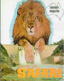 DAMN LIONS