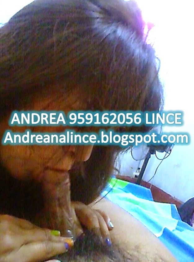 ANDREA 959162056 LINCE