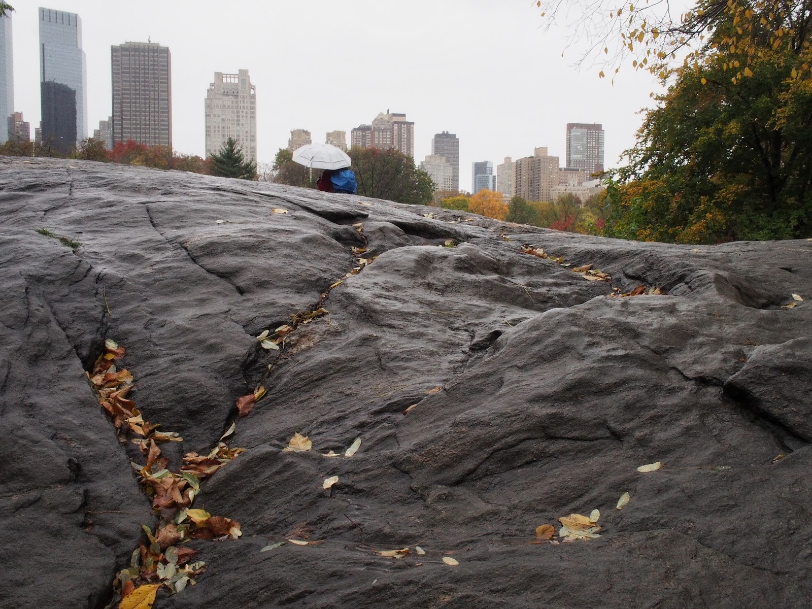 Lone Umbrella, #umbrella #loneumbrella #rocks #centralpark #rainyday #nyc 2014