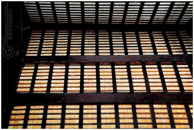 Photograph Pattern