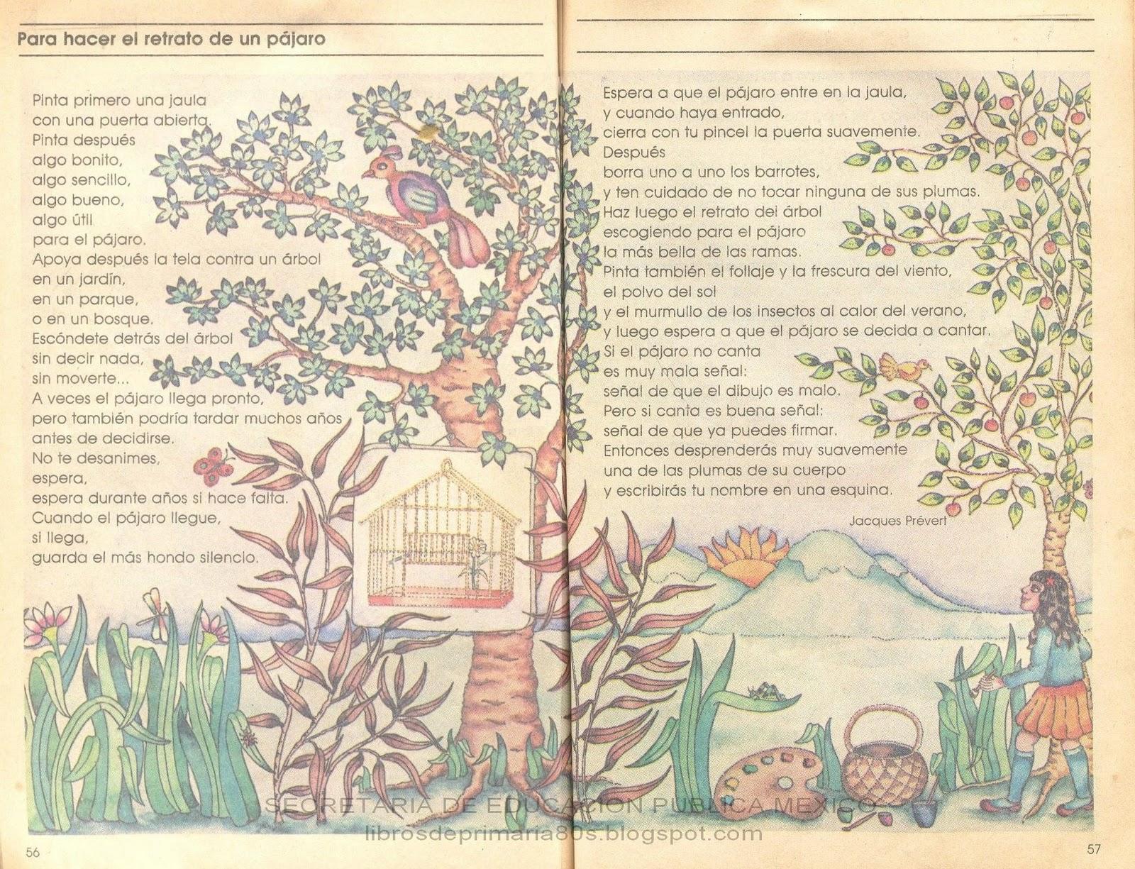 Libros de Primaria de los 80\'s: Para hacer el retrato de un pájaro ...