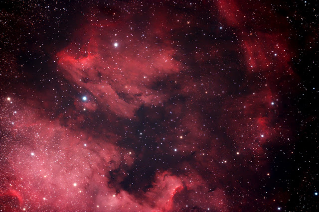 Astro Photography image of the Pelican nebula in the constellation cygnus taken with modified canon DSLR