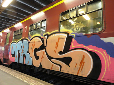 trgs graffiti train