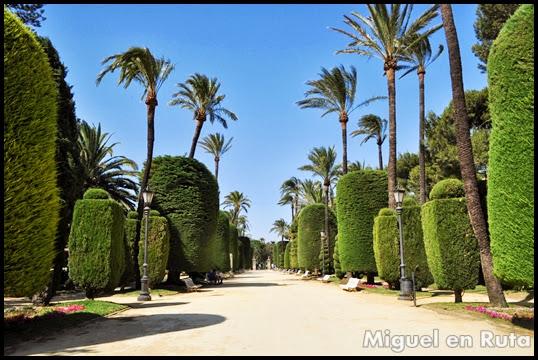 Parque-Genovés-Cádiz
