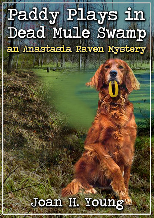 cover for Paddy Plays in Dead Mule Swamp