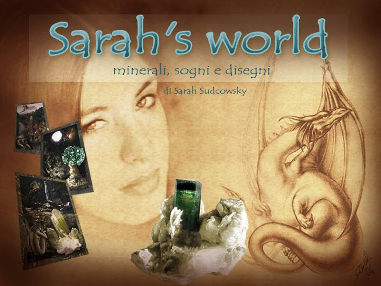 Sarah's World
