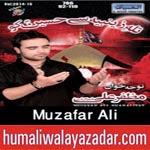 http://www.humaliwalayazadar.com/2014/11/muzafar-ali-nohay-2015.html
