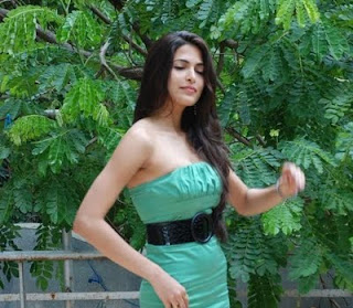 Parvathy Omanakuttan comes to mollywood