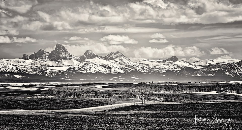 http://heather-applegate.artistwebsites.com/featured/teton-vista-black-and-white-heather-applegate.html