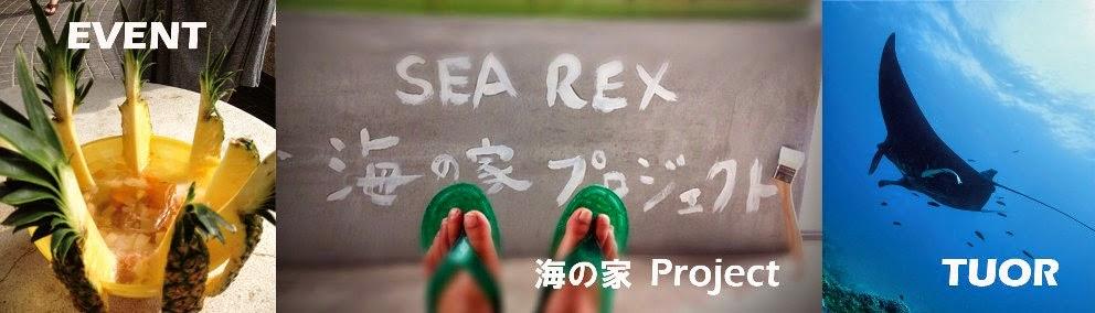 SEA REX 新着情報&キャンペーン