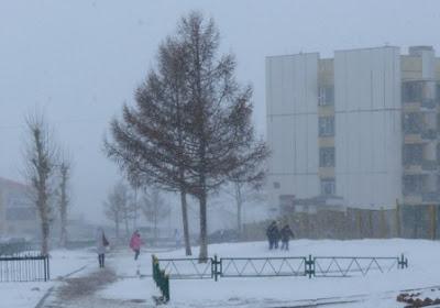 Погода в Монголии