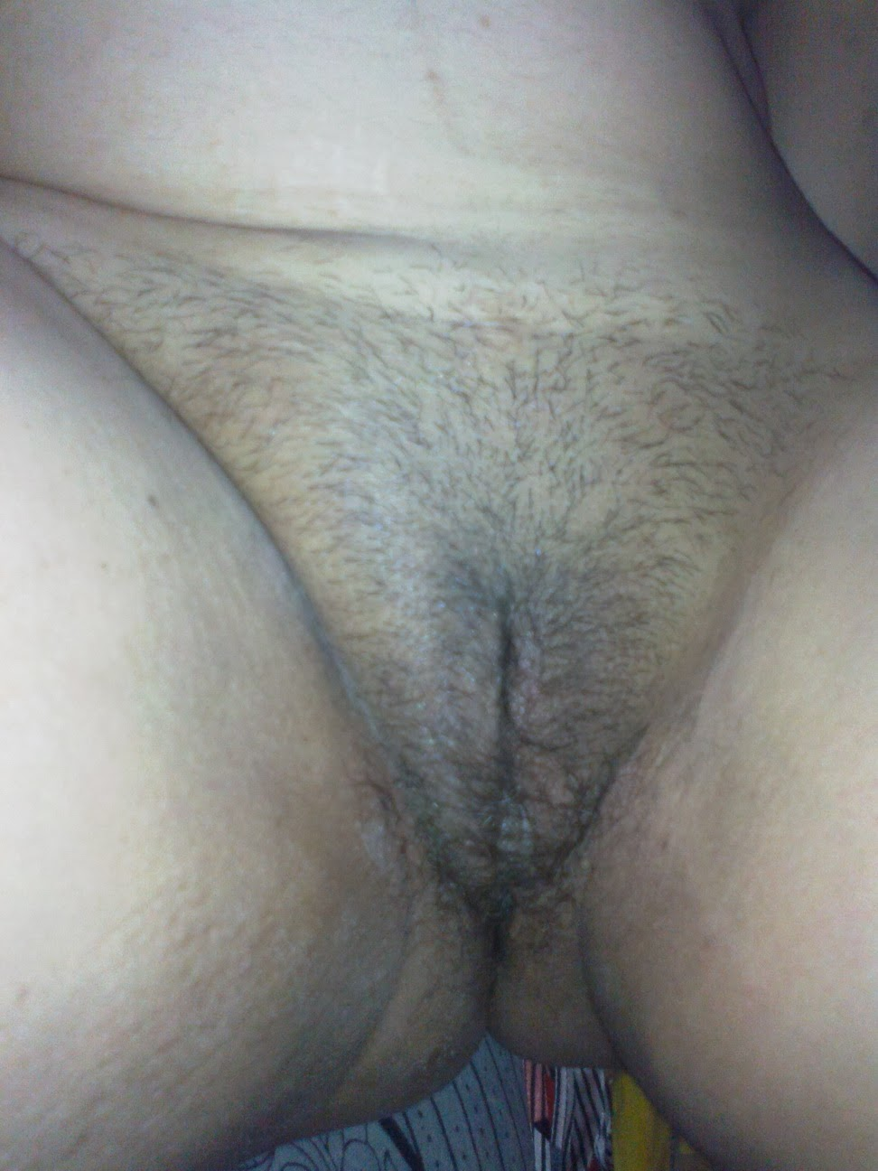 Indian aunty hairy pussies videos