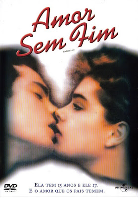 Amor Sem Fim - DVDRip Dublado