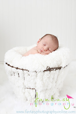 Newborn Photographers of the Triad and Winston Salem