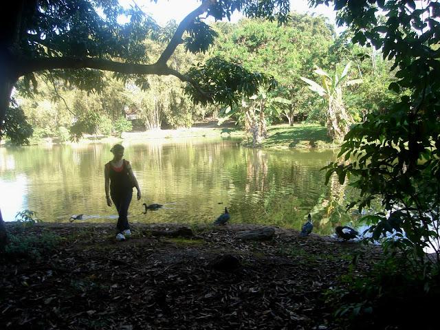Parque Areião e seu lago com os patos