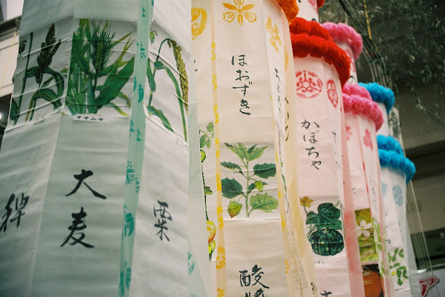 plants' name written on the tanabata decorations