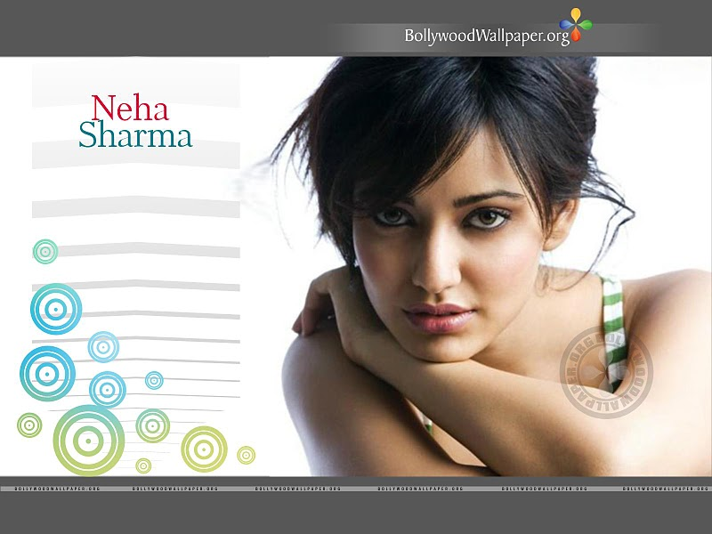 Wallpaper Pelho28 Hd Wallpaper Of Neha Sharma Hot