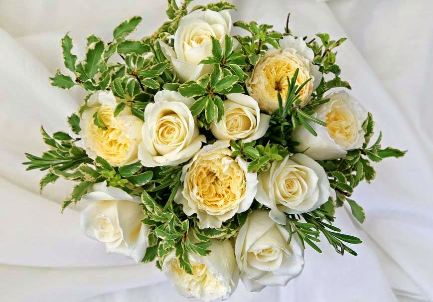 bouquet-of-white-roses