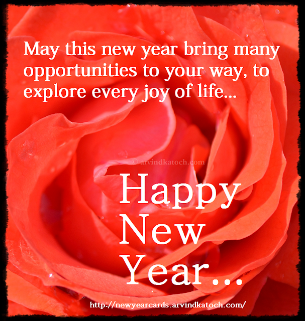 brings, opportunities, explore, joy, life, Happy New Year, New Year Card