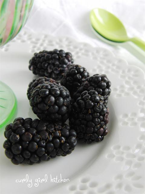 http://www.curlygirlkitchen.com/2013/07/blackberry-chocolate-chip-frozen-yogurt.html