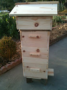 Build Your Own Natural Beehive
