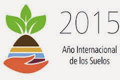 Año Internacional de los Suelos