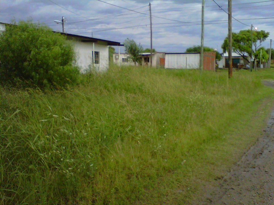 San benito ahora vecinos piden limpieza frente al jard n for Inscripcion jardin maternal 2016 gobierno de la ciudad