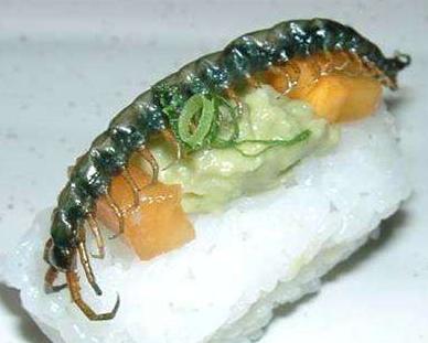 sushi serangga