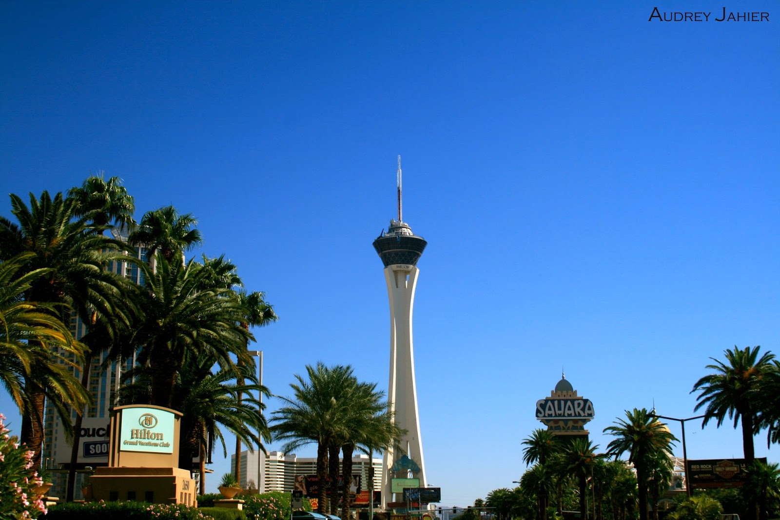 las-vegas-casino-nevada-roadtrip-usa