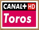 canal plus toros online en directo