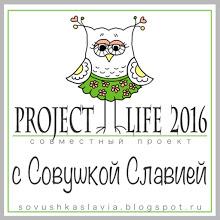 СП Project life 2016