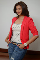 Actress Hamsa Nandini Pictures in Jeans at Loukyam Movie Success Interview   022.jpg